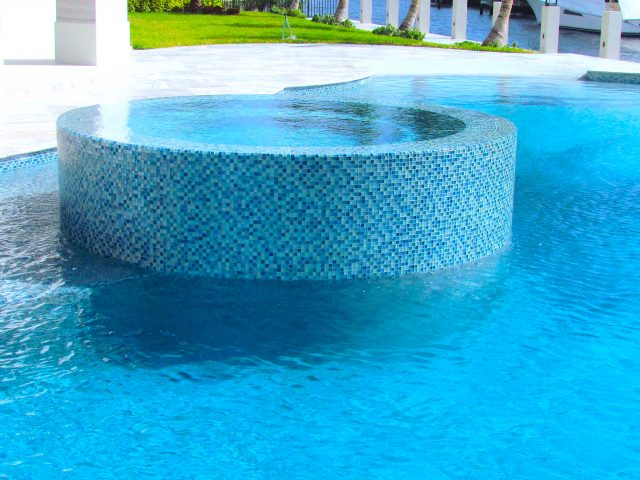 Freeform swimming pool with spa in Davis South Florida